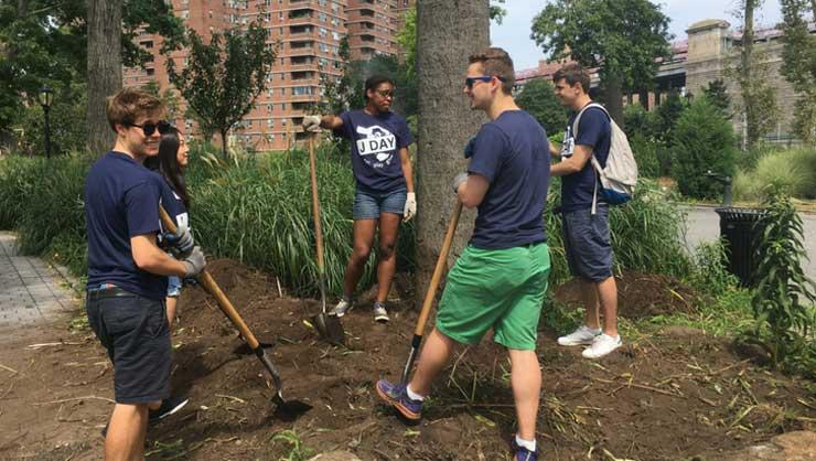 J Day participants helped make Manhattan a little greener!