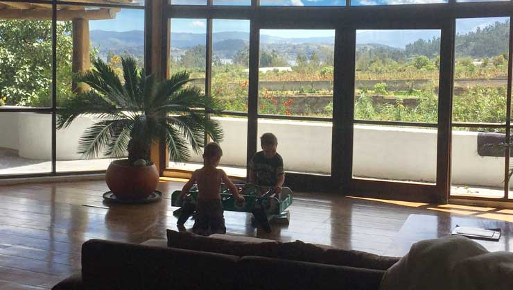 The little ones enjoyed a room with a view while on vacation.