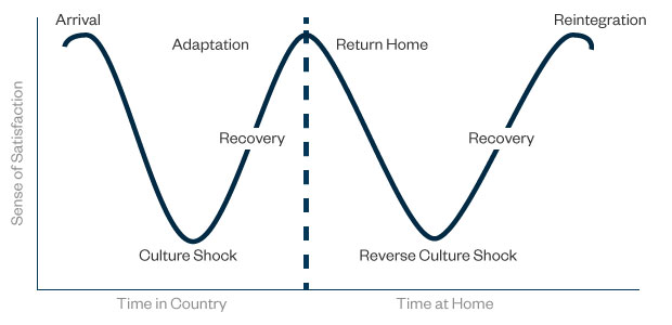 The W Curve illustrates the ups and downs of culture shock.