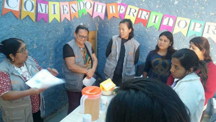 Community health workers lead a nutritional workshop focused on iron-rich diets