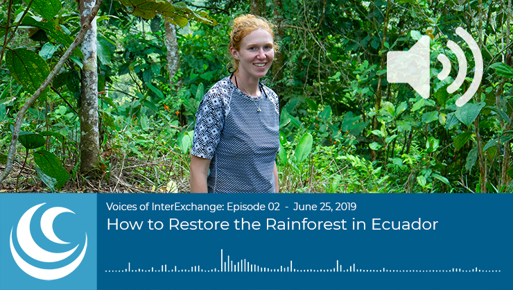 How to Restore the Rainforest in Ecuador