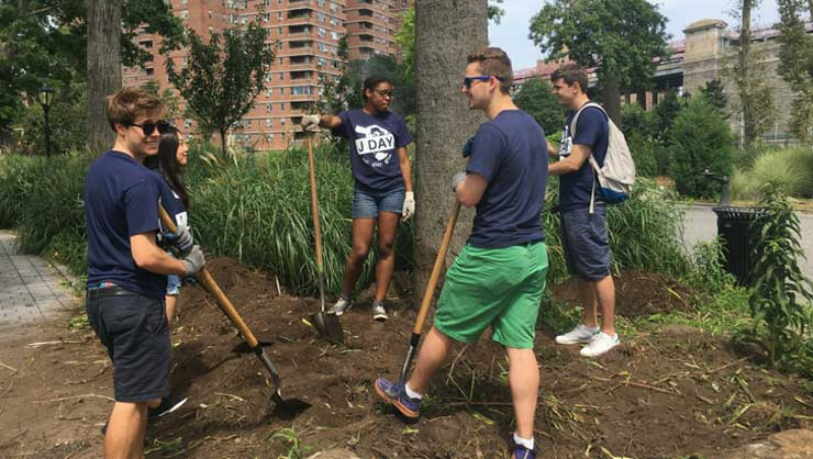 J Day participants helped make Manhattan a little greener!