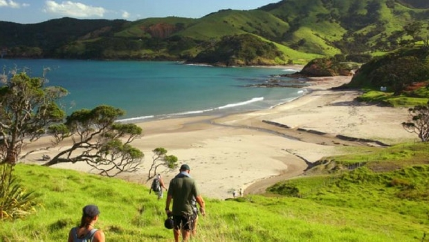 Exploring the Bay of Islands.