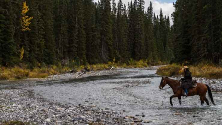 Horse Riding in Banff Canada