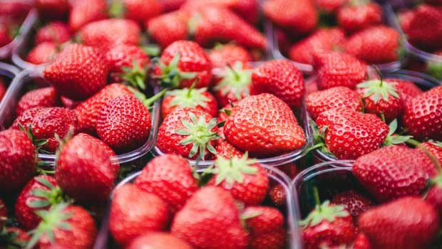 Kid-Friendly Activities in Hunterdon County: Strawberry Fun!