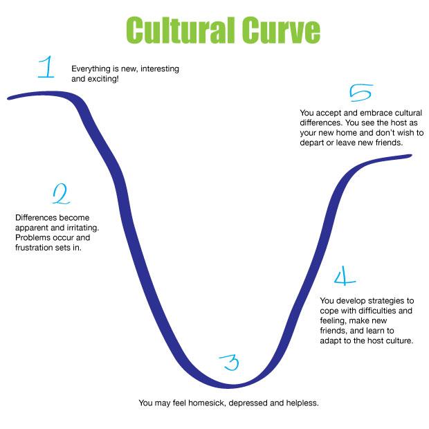 Cultural curve