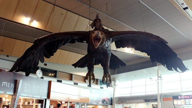 Gandalf rides a giant eagle in the Wellington Airport.