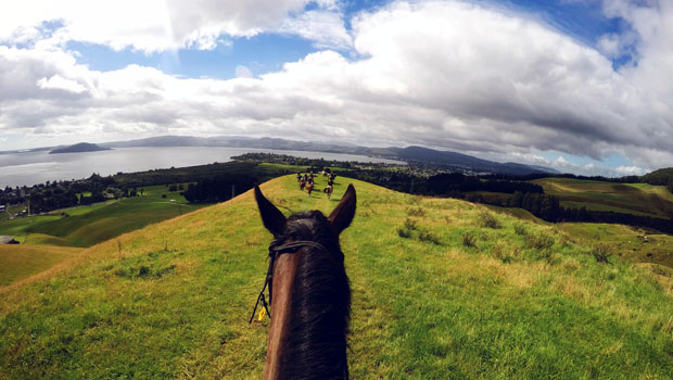 View of Lake Rotorua while horseback riding at Adventure Playground.