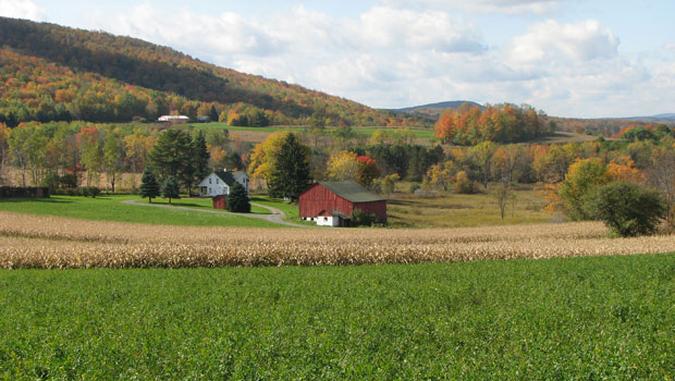 Farm in Morris Township
