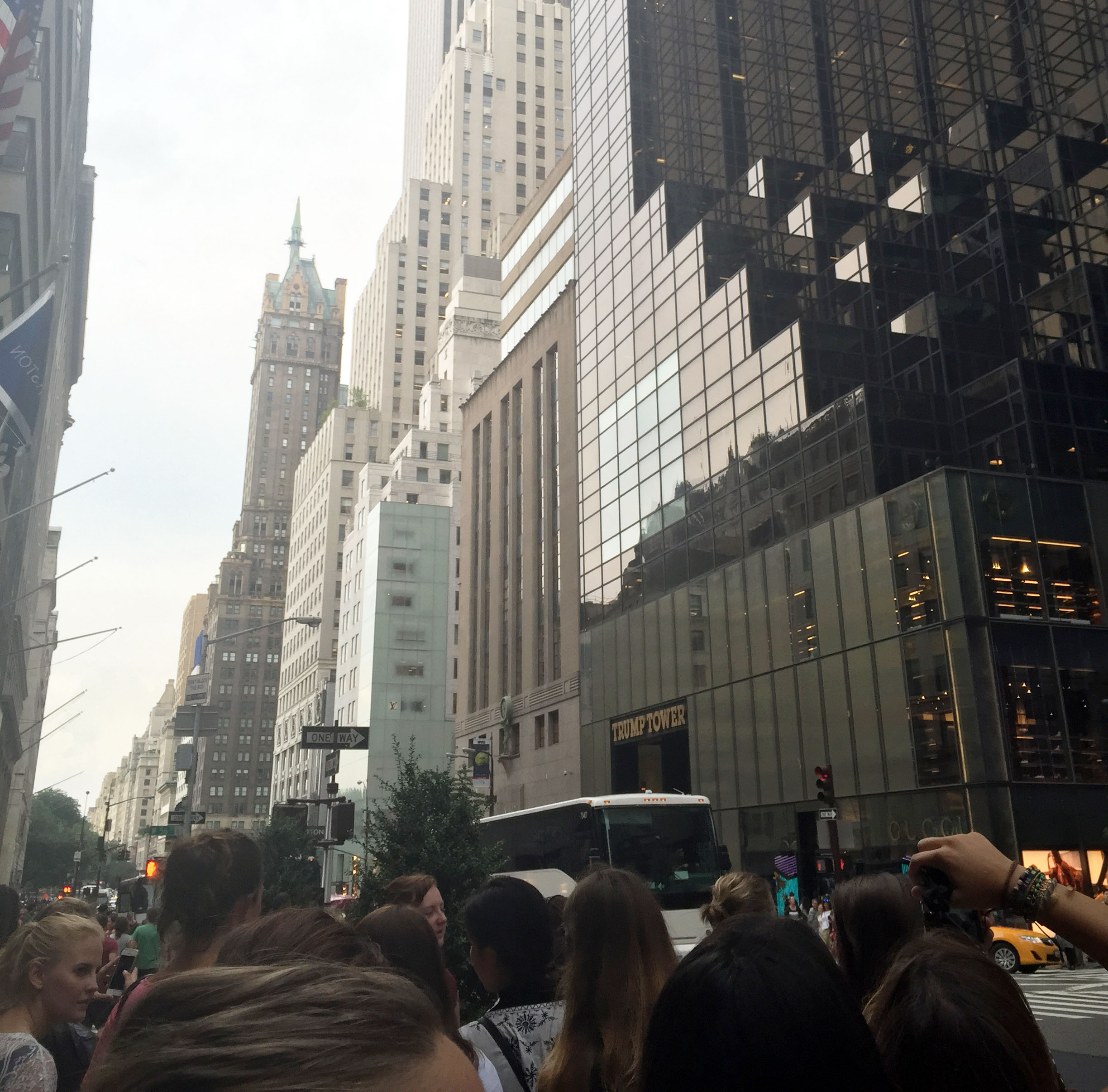 marveling at buildings on 5th Avenue