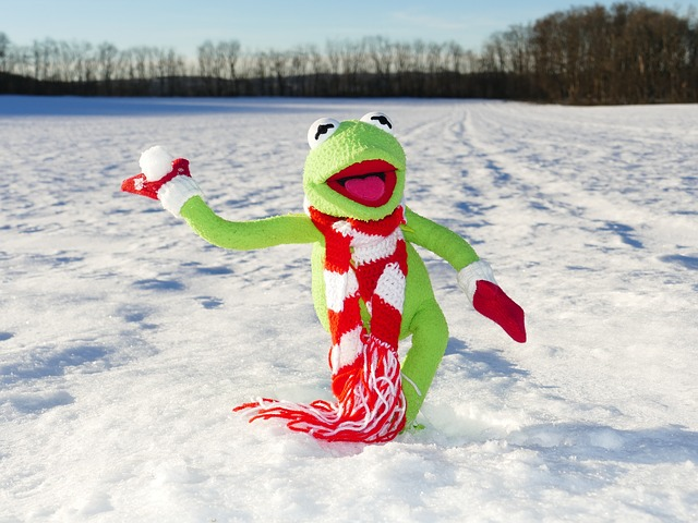 Kermit the Frog playing in the snow