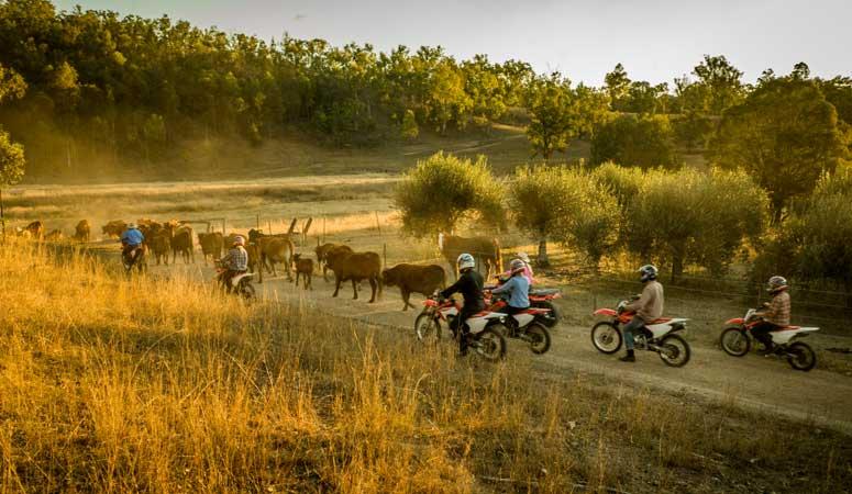 Work & Travel Australia - Outback