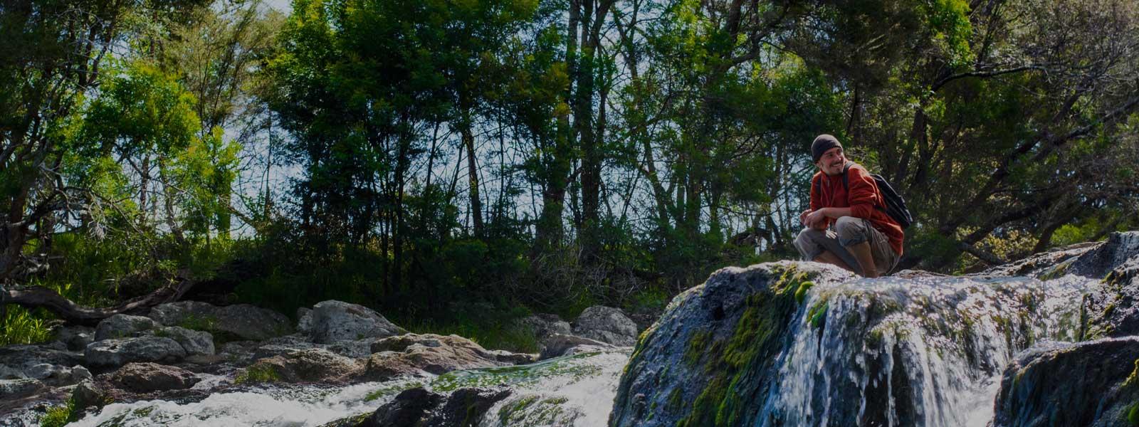 Paihia Waterfall